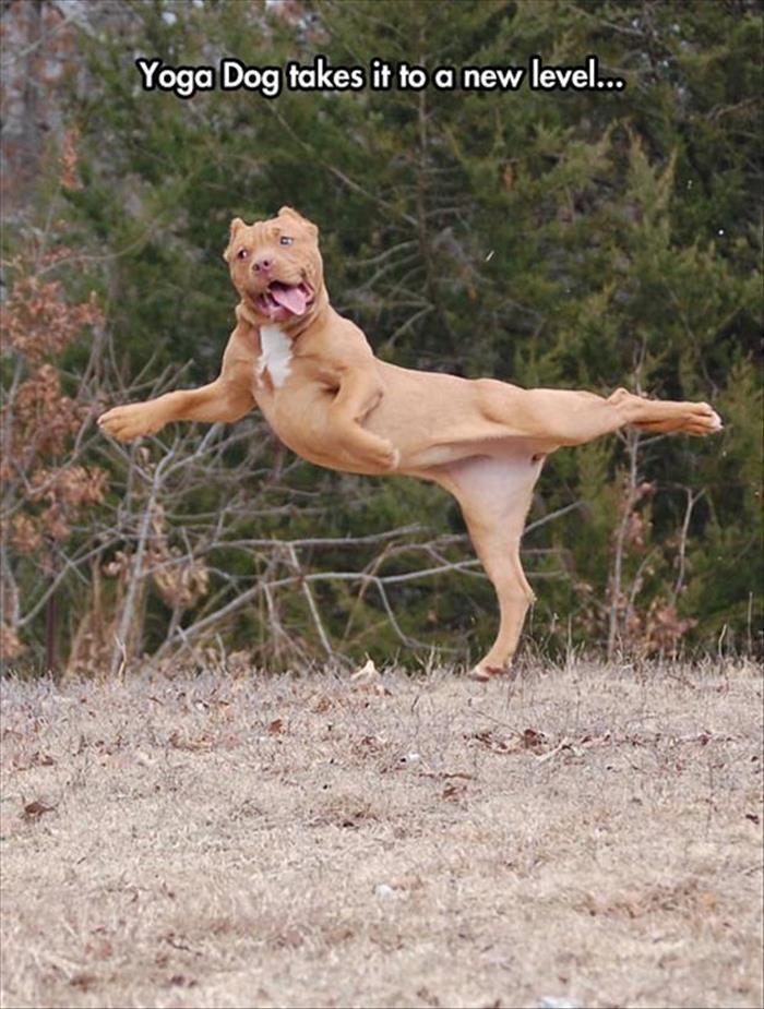 Funny Animal Pictures Of The Day 20 Pics강원랜드바카라월드카지노강원랜드바카라월드카지노강원랜드바카라월드카지노강원랜드바카라월드카지노강원랜드바카라월드카지노강원랜드바카라월드카지노강원랜드바카라월드카지노강원랜드바카라월드카지노강원랜드바카라월드카지노강원랜드바카라월드카지노강원랜드바카라월드카지노강원랜드바카라월드카지노강원랜드바카라월드카지노강원랜드바카라월드카지노강원랜드바카라월드카지노강원랜드바카라월드카지노강원랜드바카라월드카지노