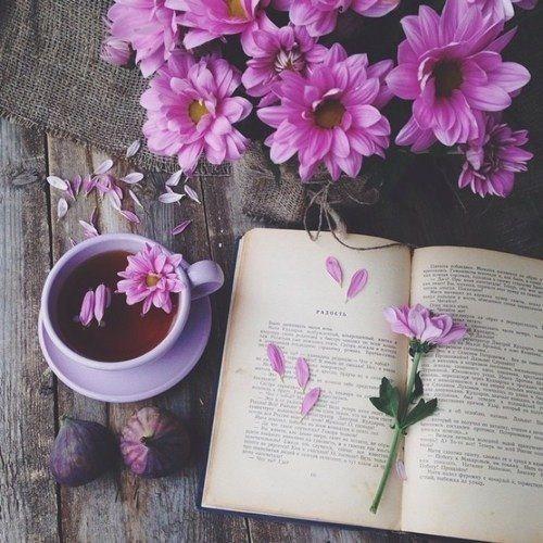 книга, цветы, розовый, чай