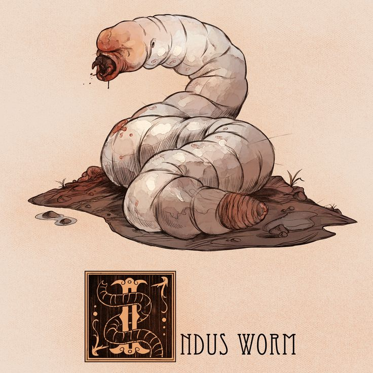 Name: Indus Worm Area of Origin: Medieval Europe, Greece The Indus Worm was a large, white carnivorous worm that resided around the Indus River in Asia. The creature appeared in many medieval European bestiaries, though it was originally described by...