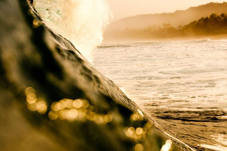 Re-visiting Kelly Cestari - one of the Robin Sprong Wallpaper designers. An avid surfer and photographer, Cestari's work is nothing short of jaw-dropping.