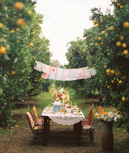 """女の子なら憧れちゃう! 緑とお花に囲まれた""""ピーターラビット""""に出てきそうな可愛いすぎるお庭"""