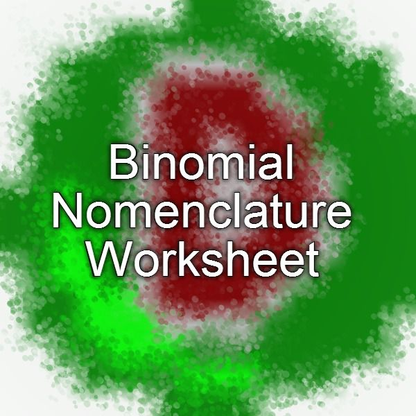 binomial nomenclature worksheet school pinterest worksheets and school. Black Bedroom Furniture Sets. Home Design Ideas