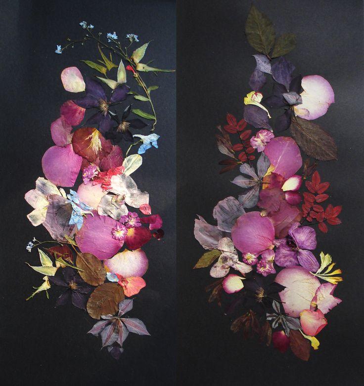 Original botanicals on a black background. Set of 2 artworks #pressedflowers #collage #black