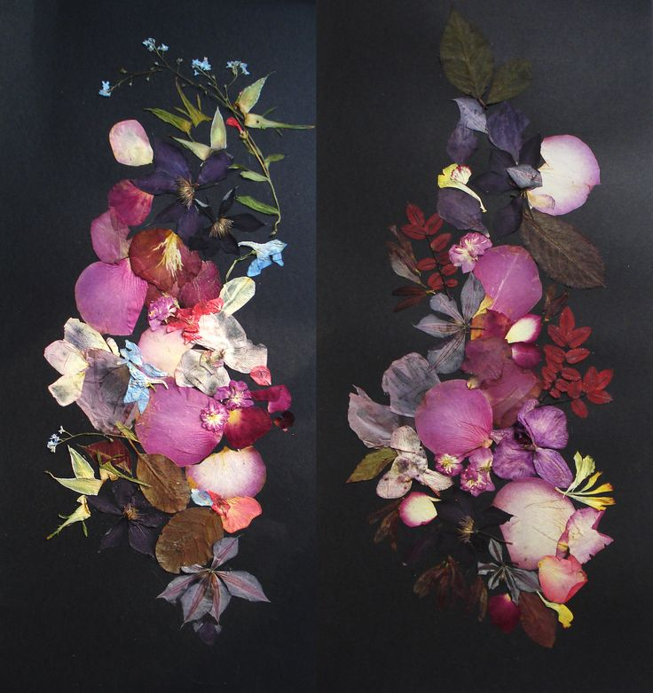Original botanicals on a black background. Set of 2 artworks #pressedflowers #collage #black