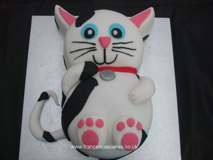 Best Cat Cakes Images On Pinterest Desserts Birthday Cakes - This cat eating a birthday cake is everything you need in life