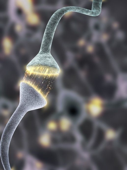 Scanning electron microscope images reveal firing synapses