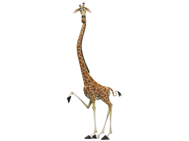 Madagascar a collection of ideas to try about other - Girafe madagascar ...