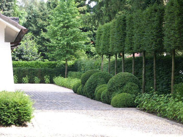 Different sized topiary balls