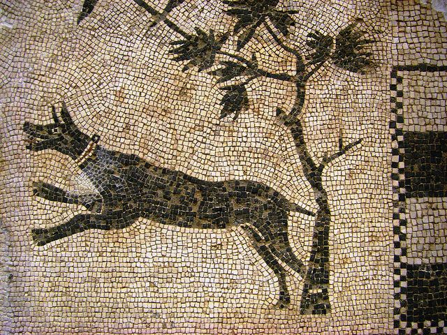 Roman Mosaic. Dog. Mérida (Emerita Augusta), Spain.