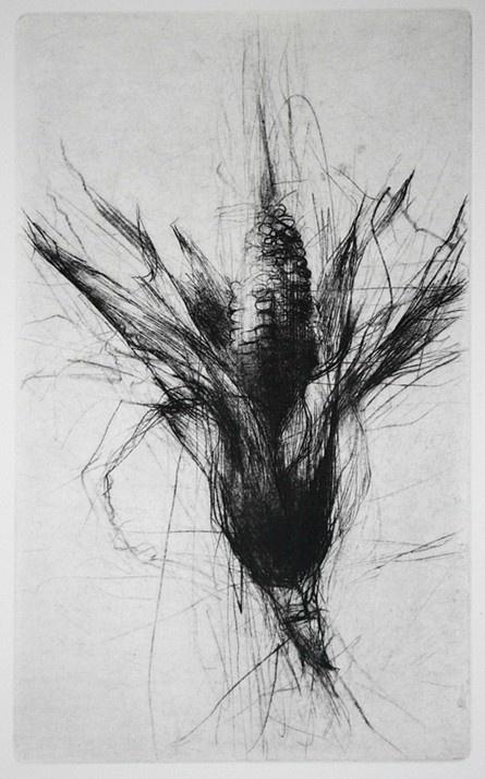 Jake Muirhead - Corn - Drypoint