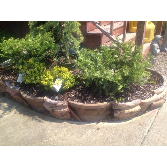 Incredible Broken Pot Ideas Recycle Your Garden: 40 Best Images About Broken Flower Pots On Pinterest
