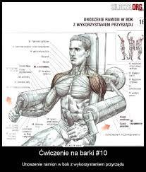 Znalezione obrazy dla zapytania barki ćwiczenia