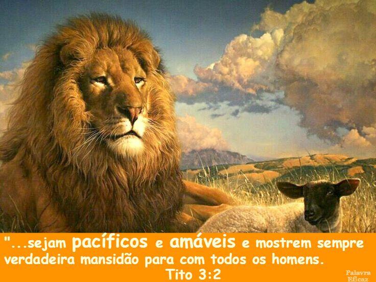 Mejores 11 imágenes de Tito, Filemon - Citações Bíblicas en ...