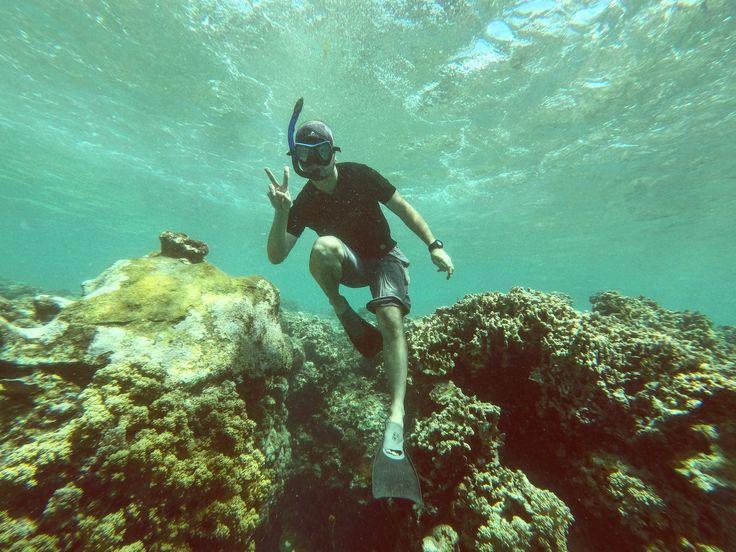 Free dive at Menjangan, Bali - Indonesia