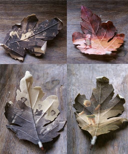 leaf brooches made from photographs printed on fabric, this is a very cool idea and I'm mulling it over cause I know there are many ways to use it, on a shirt, a purse, an artistic family tree on a wall...