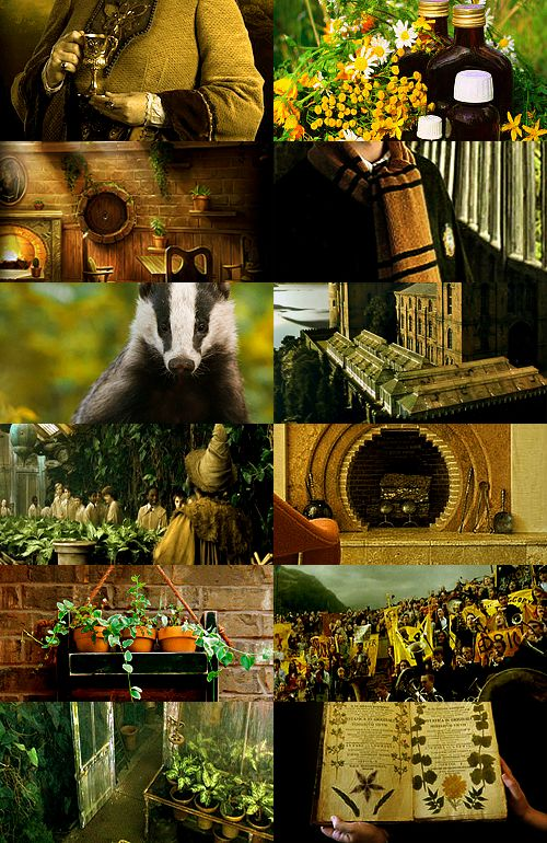 17 best images about hufflepuff common room on pinterest for Bedroom quiz pinterest
