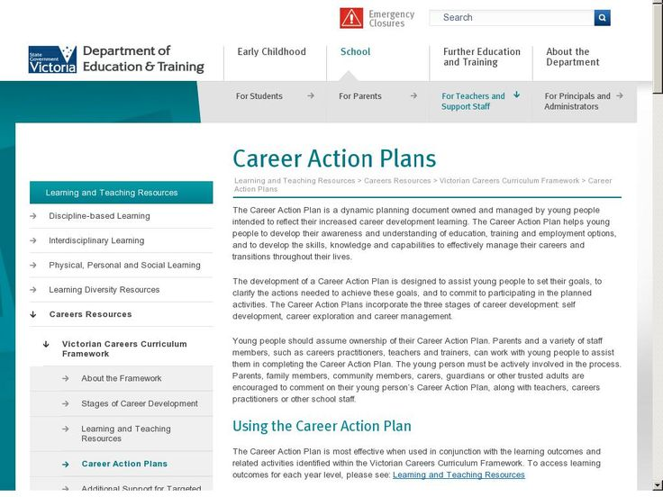 Professional action plan