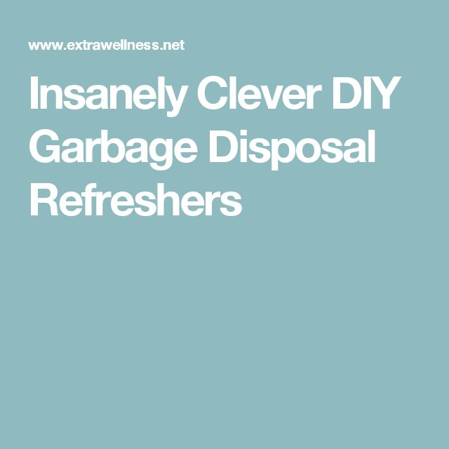 Insanely Clever DIY Garbage Disposal Refreshers