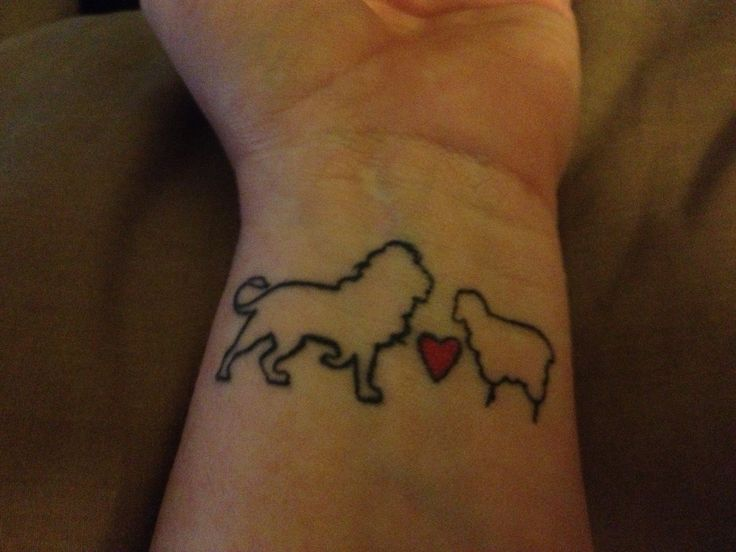 A tribute to one of my all time favorite books! I love the twilight saga! And so the lion fell in love with the lamb......