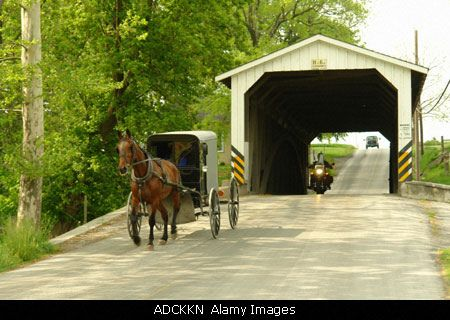 ADCKKN Gap, PA, Pennsylvania, Pennsylvania Dutch Country, Amish, horse and buggy, road, covered bridge