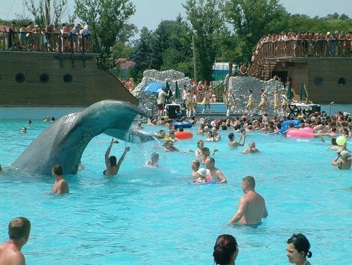 Let's dance with the dolphin! (Hungarospa, Hajduszoboszlo, Hungary)