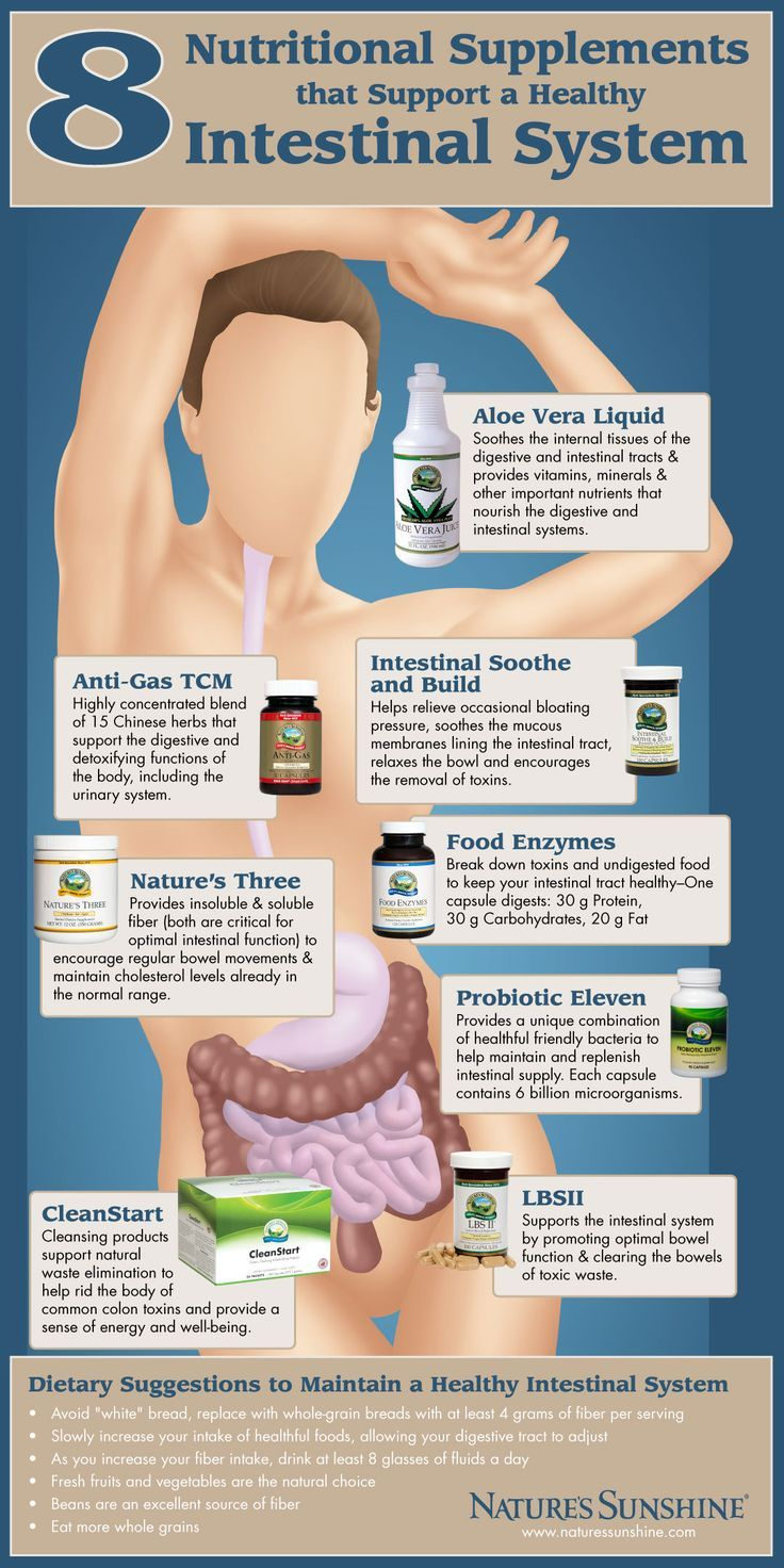 8 Nutritional Supplements to Support a Healthy Intestinal System Infographic  He…
