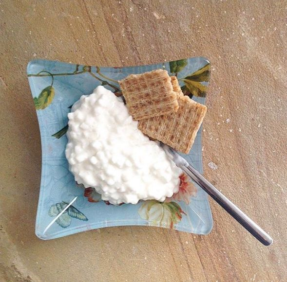 Cottage Cheese for Late Night Snacks