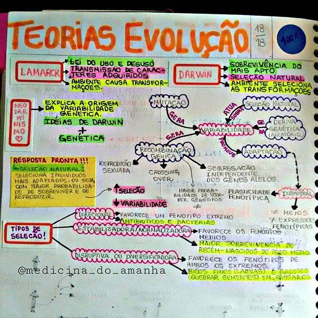 #RESUMO #BIOLOGIA #EVOLUÇÃO ❤❤❤ Também já está disponível para download no blog (RESUMOS 2016 ...