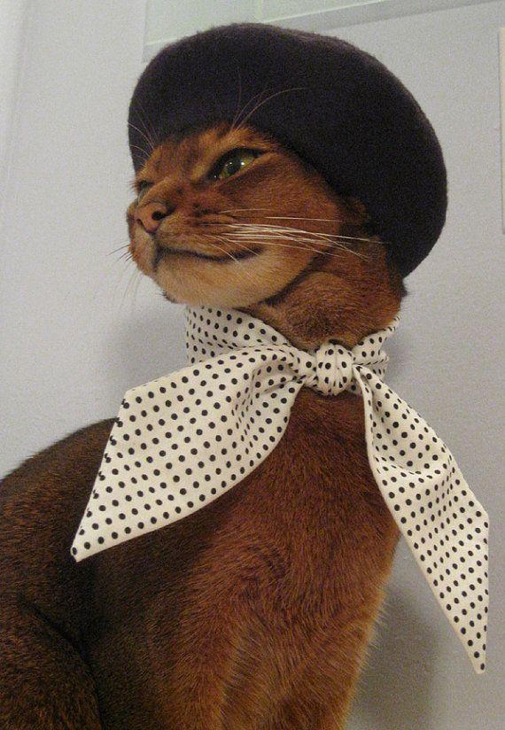 nice hat!Beret Kitty, Dresses Up, Minis Dots, Black And White Kittens, Neck Scarf, Black Felt, Funny Animal, French Style, Felt Beret