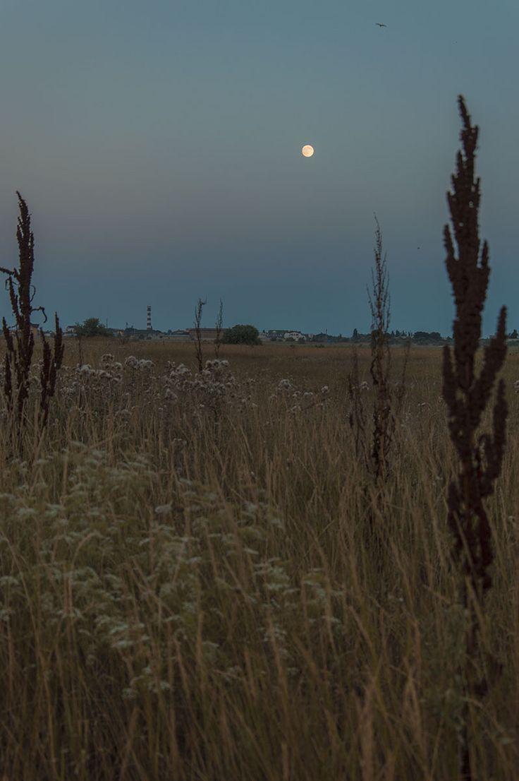 Полнолуние, Заозерное, Крым