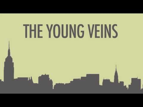 The Young Veins - Take A Vacation! << I LOVE THIS SONG. This is Ryan and Jon's band after they left Panic! :P