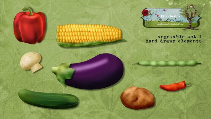 Vegetable Set 1