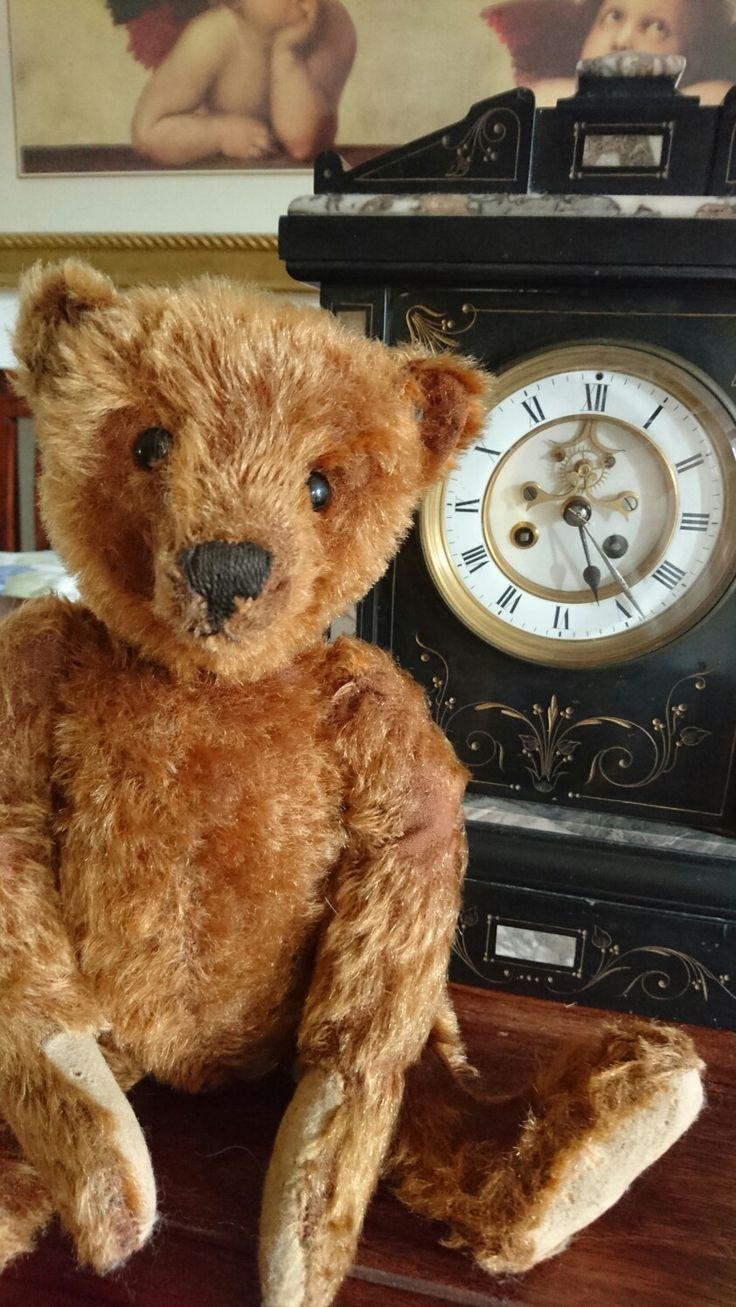 Steiff Teddy 1906/1908