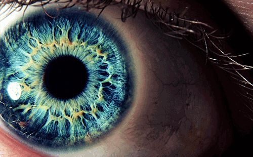 Eye Photography | Updegraff Laser Vision