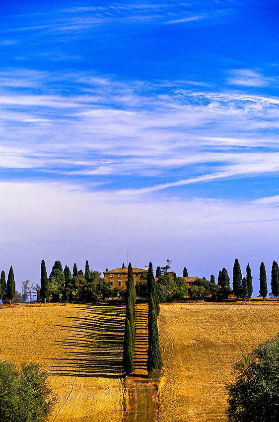 Cerca de Pienza, province of Siena, Tuscany, Italy