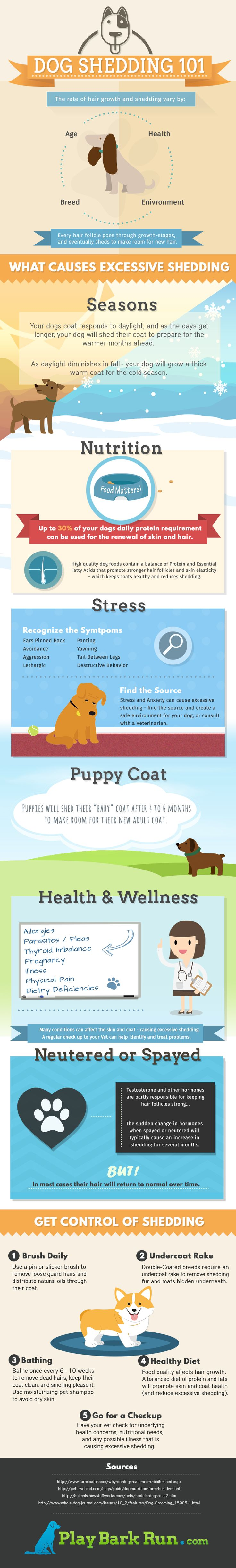the 25 best dog healthcare ideas on pinterest canned dog food