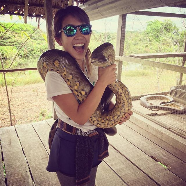 【jury0324】さんのInstagramをピンしています。 《Love animal  I was in Peruvian Amazon,Iquitos last year. I went there just for my experience. It was nice to staying in the middle of Amazon forest. But I really didn't like the night trek cause hundred ants climbed my legs and they bite me a lot!! That freaked me out !!!!!!! #amazonas #amazon #trip #travel #tree #nature #iquitos #peru #world #backpacker #beautiful #amazing #southamerica #worldtraveler #world #girl #animals #travelgram #trav...