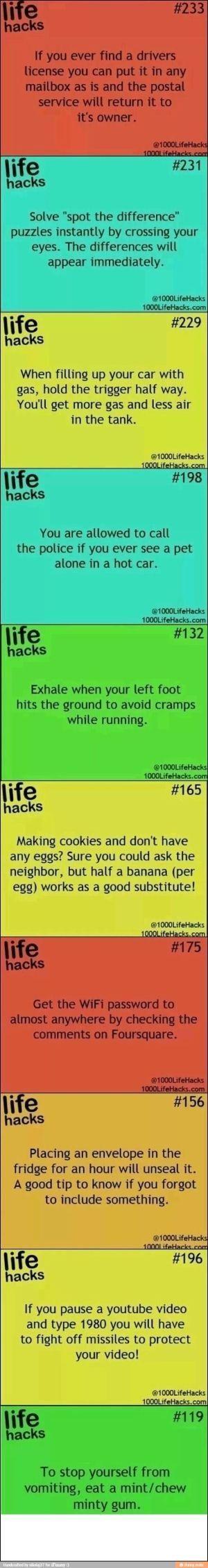 Endless Life Hacks: Life Hacks - Life hacks by LiveLoveLaughMyLife
