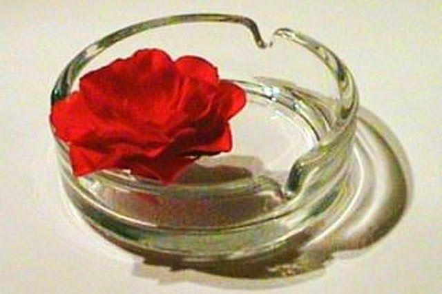 Día mundial sin tabaco.  31 de mayo.  Un cenicero con una rosa, logo del Día Mundial Sin Tabaco.