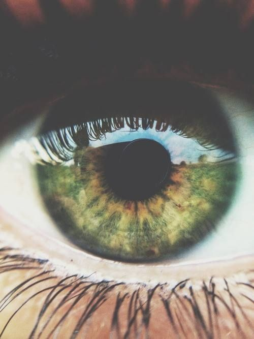 this is really cool, cause its green eyes but it has brown in the middle<…
