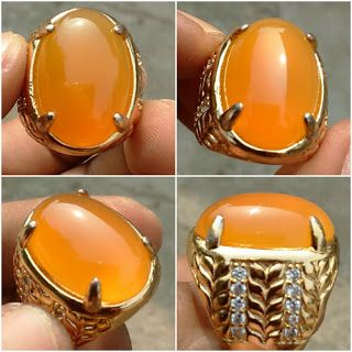 Orange Raflesia Bengkulu