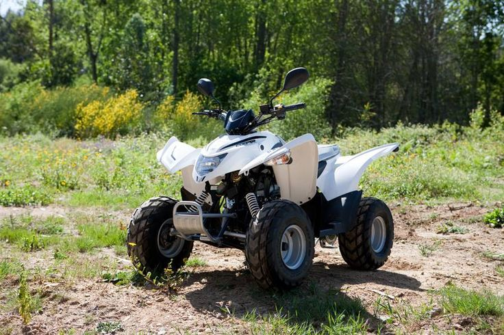Foto 3 de 6: Aeon Cobra 50 Hi-Perf | ATV | Moto 4
