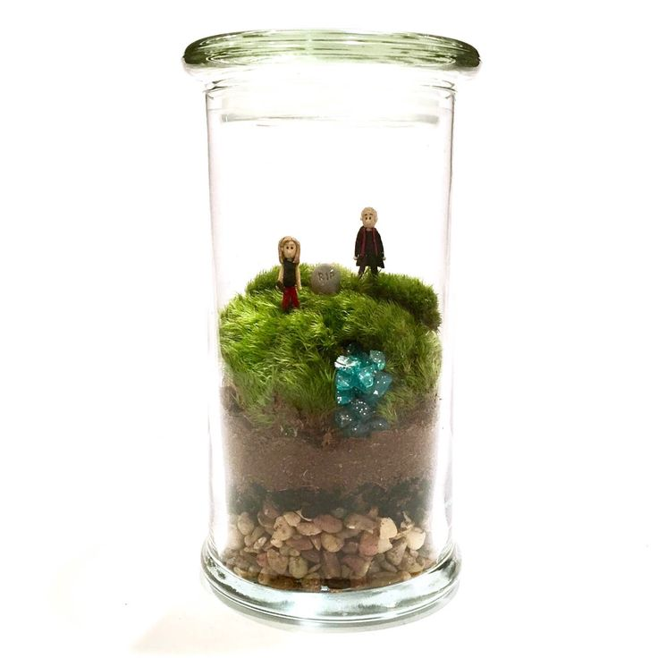 Welcome to Sunnydale // Buffy & Spike // Buffy the Vampire Slayer Inspired Terrarium by ForTheLoveOfPop on Etsy https://www.etsy.com/listing/237371551/welcome-to-sunnydale-buffy-spike-buffy