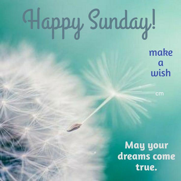 GOOD MORNING! HAPPY SUNDAY! GOD BLESS. #goodmorning #goodmorningpost #gm #gmw #good #morning #posts #post #happysunday #happy #sundaymorning #sunday #sundays  #blessings #blessed #bless #blessing