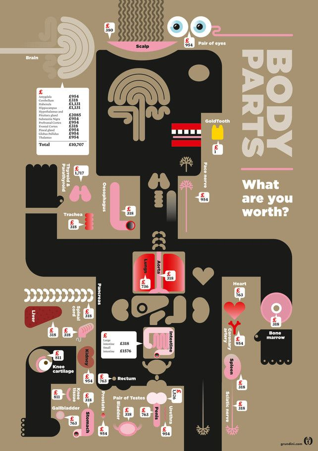 Infographics. A very 'modern' and contemporary way of looking at ourselves. Go to the original site for the full effect.