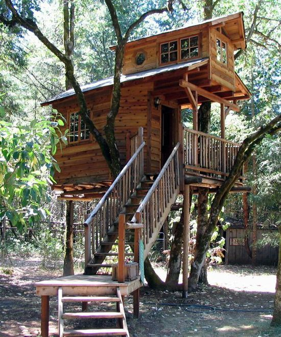 Really Cool Tree Houses 188 best tree house images on pinterest | architecture, treehouses