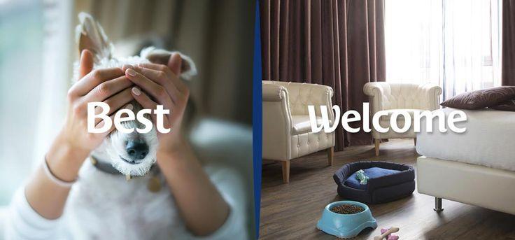 Best Welcome Pets Portalo in vacanza con te!  Per i tuoi viaggi col tuo amico a quattro zampe prenota un hotel Pet Friendly, troverai tanti servizi dedicati: una ciotola per l'acqua e per il cibo, una brandina, sacchetti igienici, una lettiera con sabbia per il tuo gatto e un contatto veterinario di zona reperibile 24 ore su 24. Ai nostri amici cani e gatti riserviamo un mondo di coccole e attenzioni!