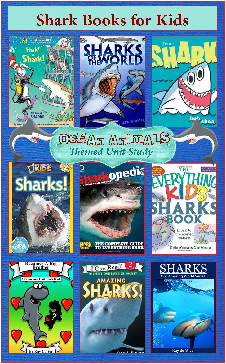 Big Fish Libro Shark Week Books For Kids Ocean Animals Unit Study 3 Boys And