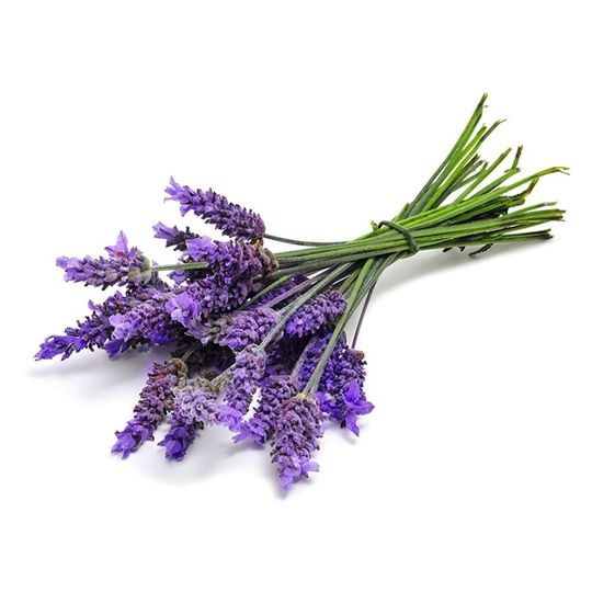 Lavender Benefits   You may have used lavender before in skin creams, shampoo, or other beauty products, but did you know it makes an excellent culinary herb, as well? Lavender has amazing beautifying effects, but can help ease bloating, lower your blood pressure and increase your relaxation, as well! Try adding a few dried cooking lavender leaves to your Blast for a healthful boost.