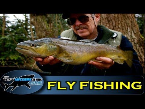 How to catch Trout on The Hawthorn Fly - The Totally Awesome Fishing Show - (More info on: https://1-W-W.COM/fishing/how-to-catch-trout-on-the-hawthorn-fly-the-totally-awesome-fishing-show/)